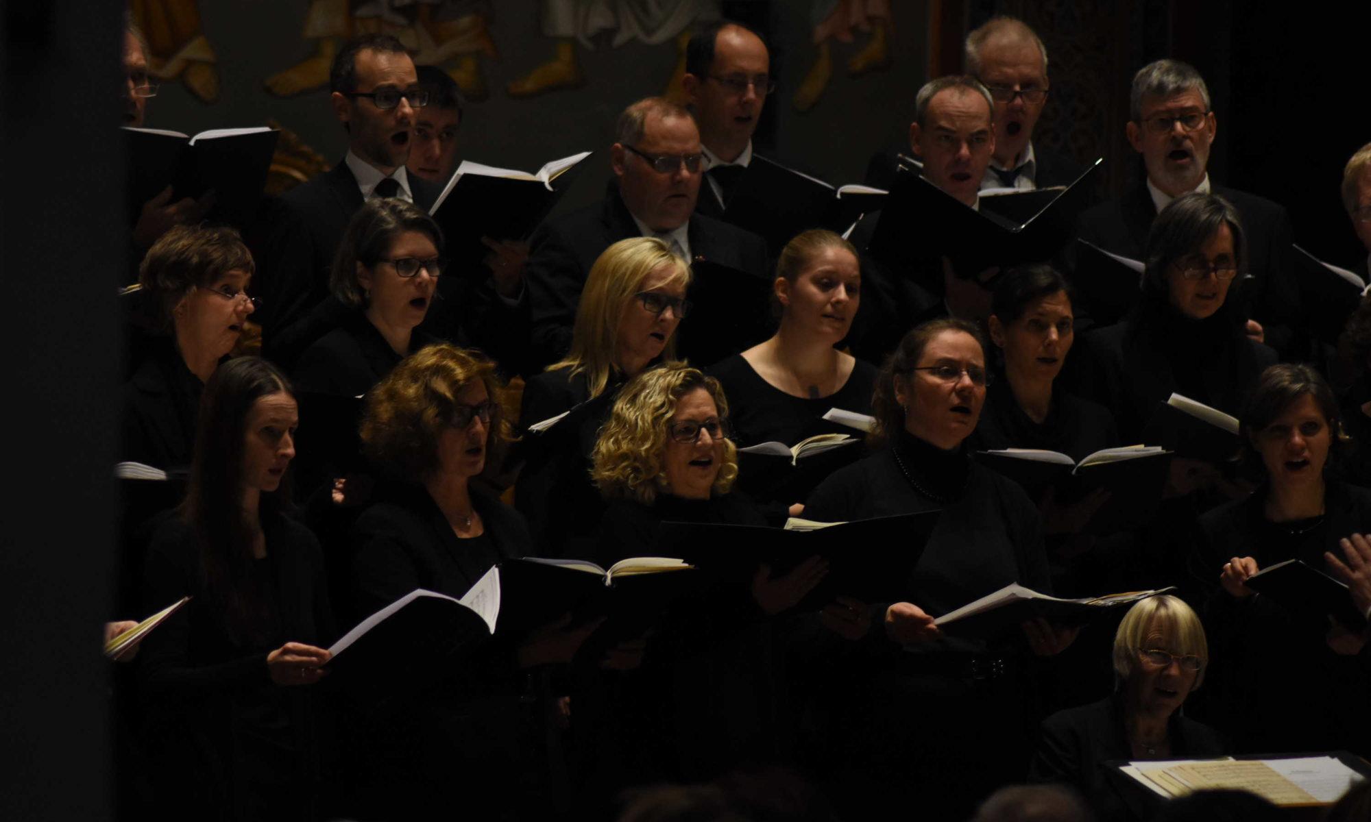 Ausschnitt aus dem Chor 2017